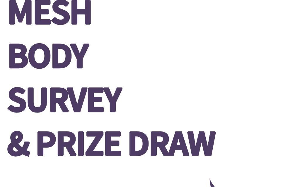 Seraphim Mesh Body Survey & Prize Draw